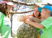 camp_verano2